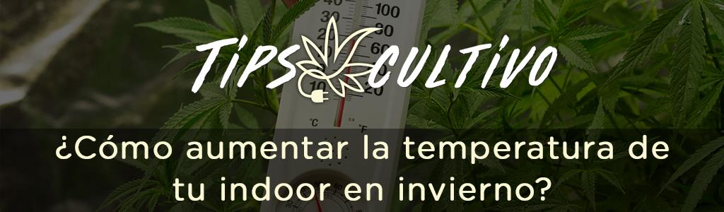 andinotech-marihuana-Como-aumentar-la-temperatura-de-tu-indoor