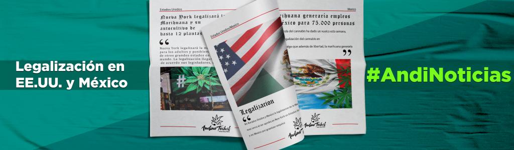 Legalización en NY y México