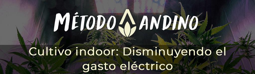 Cultivo indoor: Disminuyendo el gasto eléctrico